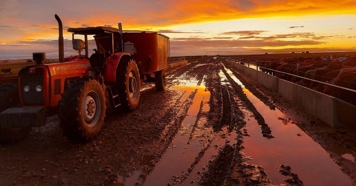Škody na plodinách spôsobených počasím